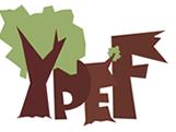 Regionální kolo soutěže YPEF ovládli studenti našeho gymnázia