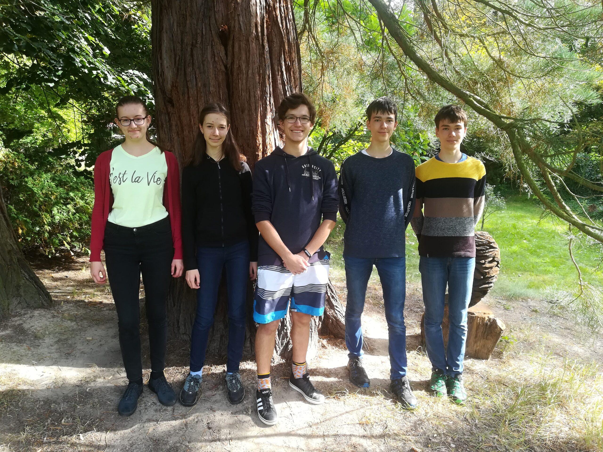 Výrazná stopa našich studentů v celostátním finále soutěže YPEF – Mladí lidé v evropských lesích